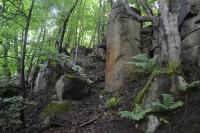 Barrhill Stones